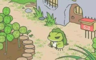 你無法改變你的蛙,就像你無法改變風險,但慶幸你可以用保險早做準備!