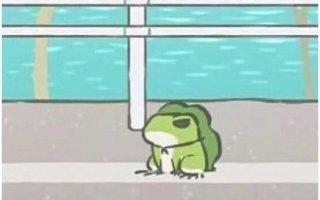 蛙火不僅因為浪,還因為懂保障