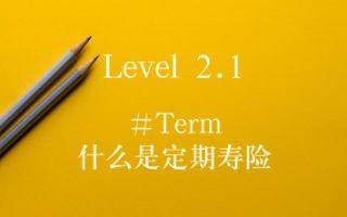 什么是定期寿险term