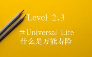 万能寿险UL是什么