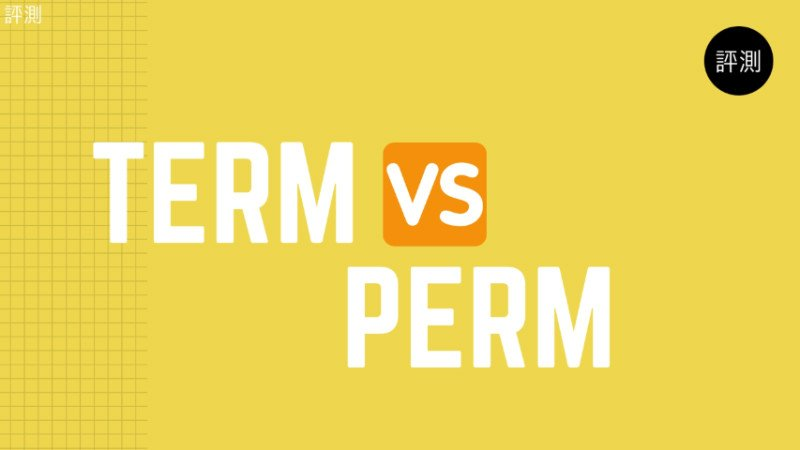 Term-vs-perm-canva-800