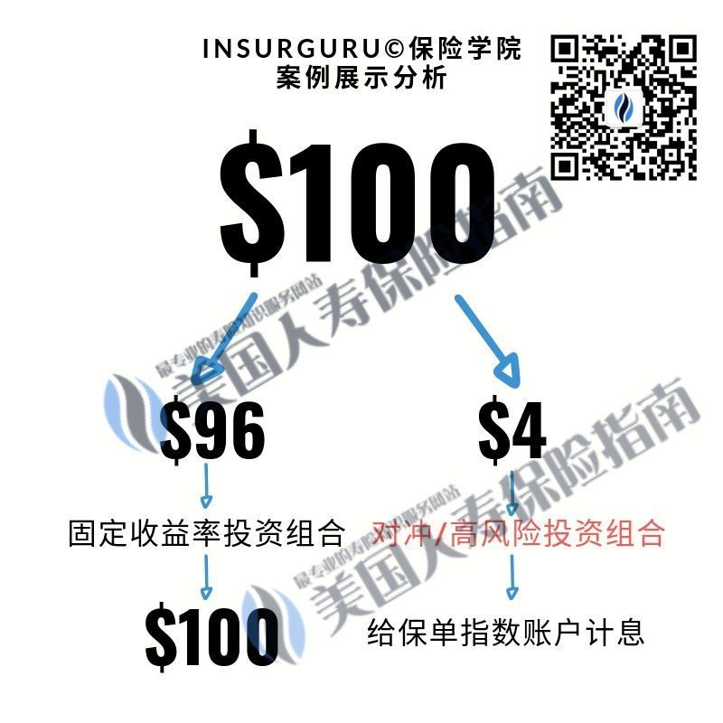 100-investment-life-insurance-company