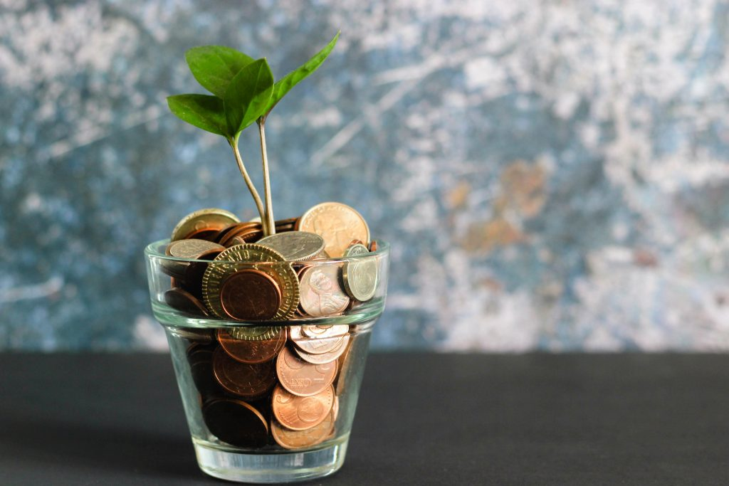 green plant in clear glass vase with coins